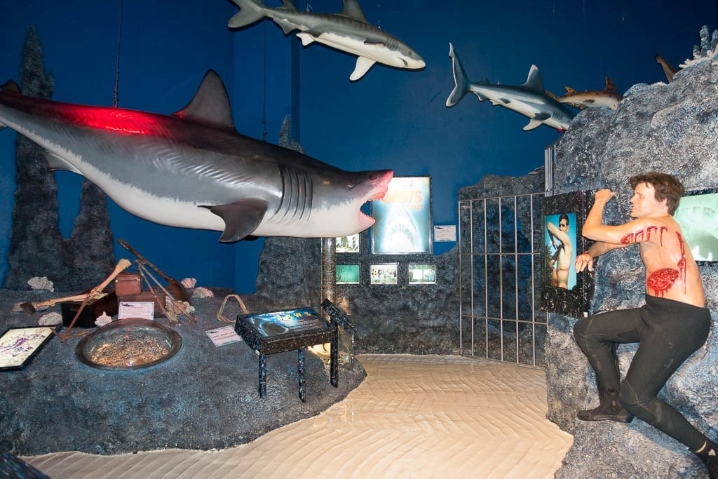Image of shark attacks at Ripley's Believe It or Not in Pattaya, Thailand