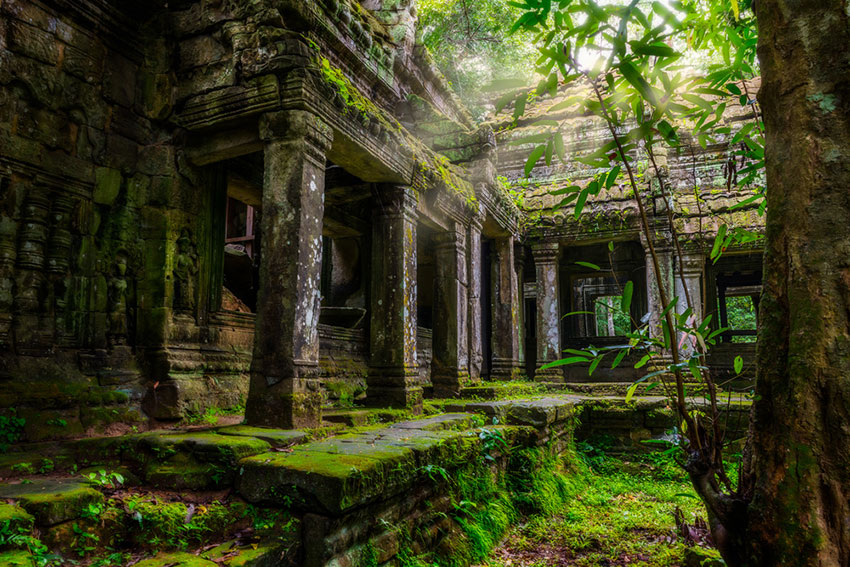 Photo of Preah Khan temple covered in green moss.
