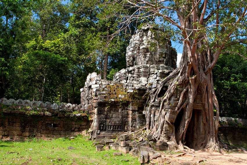 Entrance to Ta Som temple covered by the roots of a banyon tree.